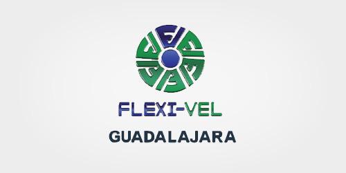 CLIENTES-FLEXIVEL